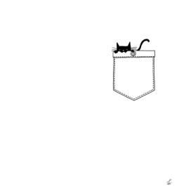 PoCat