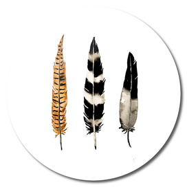 Earth Feather