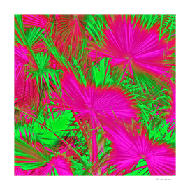 palm leaf texture abstract in pink and green