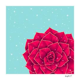 Big Holidays Christmas Red Echeveria Design