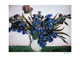 Van Gogh (Reproduction) 10th Edition
