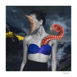 Octopus Fairy