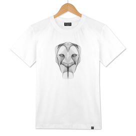 Abstract Minimal Lioness