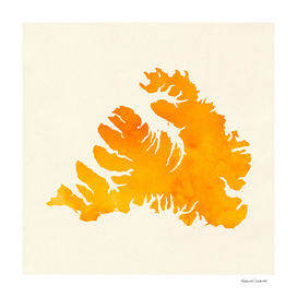 Westfjords Orange