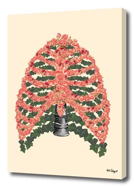 floral ribcage