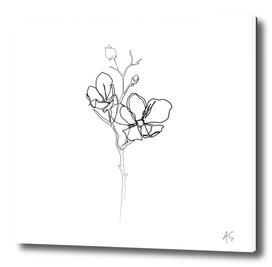 Magnolia Flower Print #1