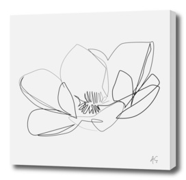 Magnolia Flower Print #2