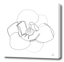 Magnolia Flower Print #3