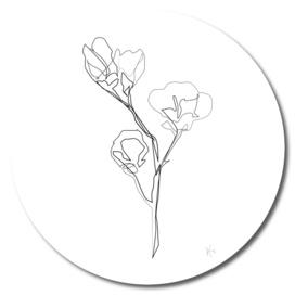Magnolia Flower Print #5