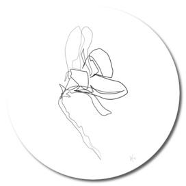 Magnolia Flower Print #6