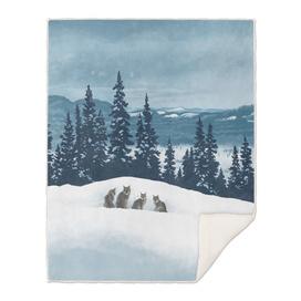 Frozen North