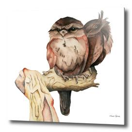 Owl Siblings Watercolor Painting