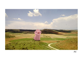 Little pig in the middle of nowhere