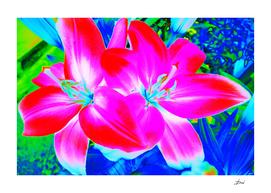 Pop-Art Lilies