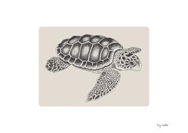 Turtle Undone in Points