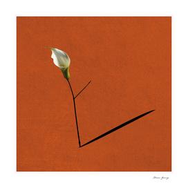 minimalist flower3