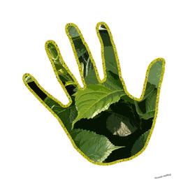 La mano green