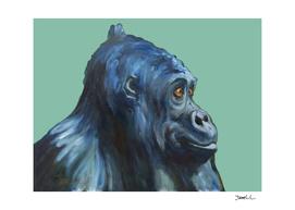 Sweet Gorilla