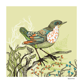 A forest-bird