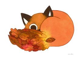 Cute shy fox