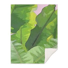 Banana Tropics