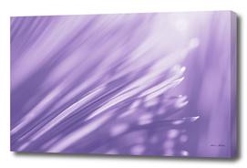 Ultra Violet Palm Tree