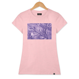 Ultra Violet Pine Tree | Trendy color of year 2018
