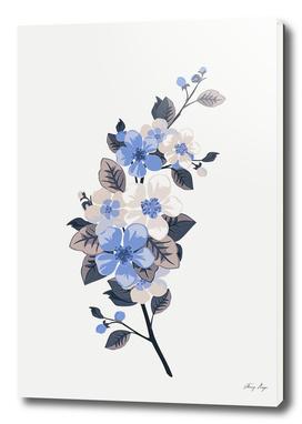 flowers / 37
