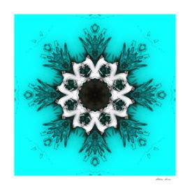 Inverse Kaleidoscope