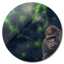 ThunderStorm Gorilla by GEN Z