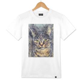 cat Alex