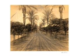The Raanana Park 3