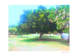 The Raanana Park 7