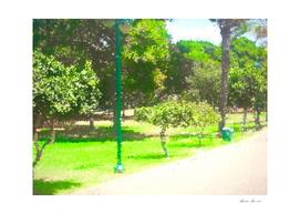 The Raanana Park 9
