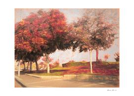 The Raanana Park 10