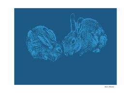 Bunnies 5