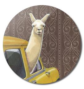 Taxi Lama