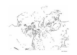 Griffon Bruxellois & Griffon petit brabancon 4
