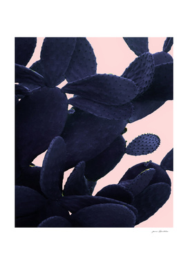 Blue Cactus On Pink