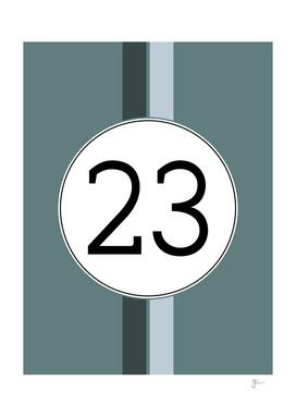 Rally 23