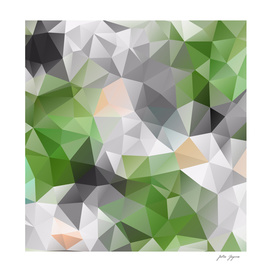 Poligonal triangles shapes print