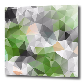 Poligonal triangles shapes print