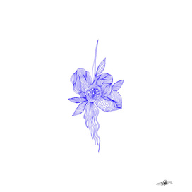 Ultramarine Flower