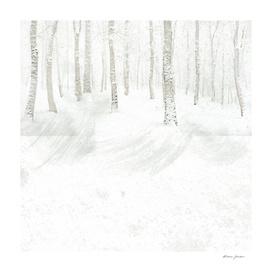 tree and snow
