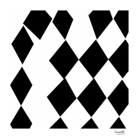 Black and White Harlequin