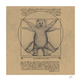 The vitruvian bear