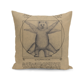The vitruvian bear