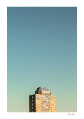 Metropolis #264