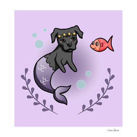 Mermaid Pit Bull 2