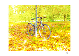 Bicycle in Hyde Park
